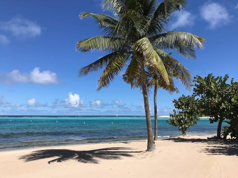 Caribbean Crewed Yacht Charters during Covid-19
